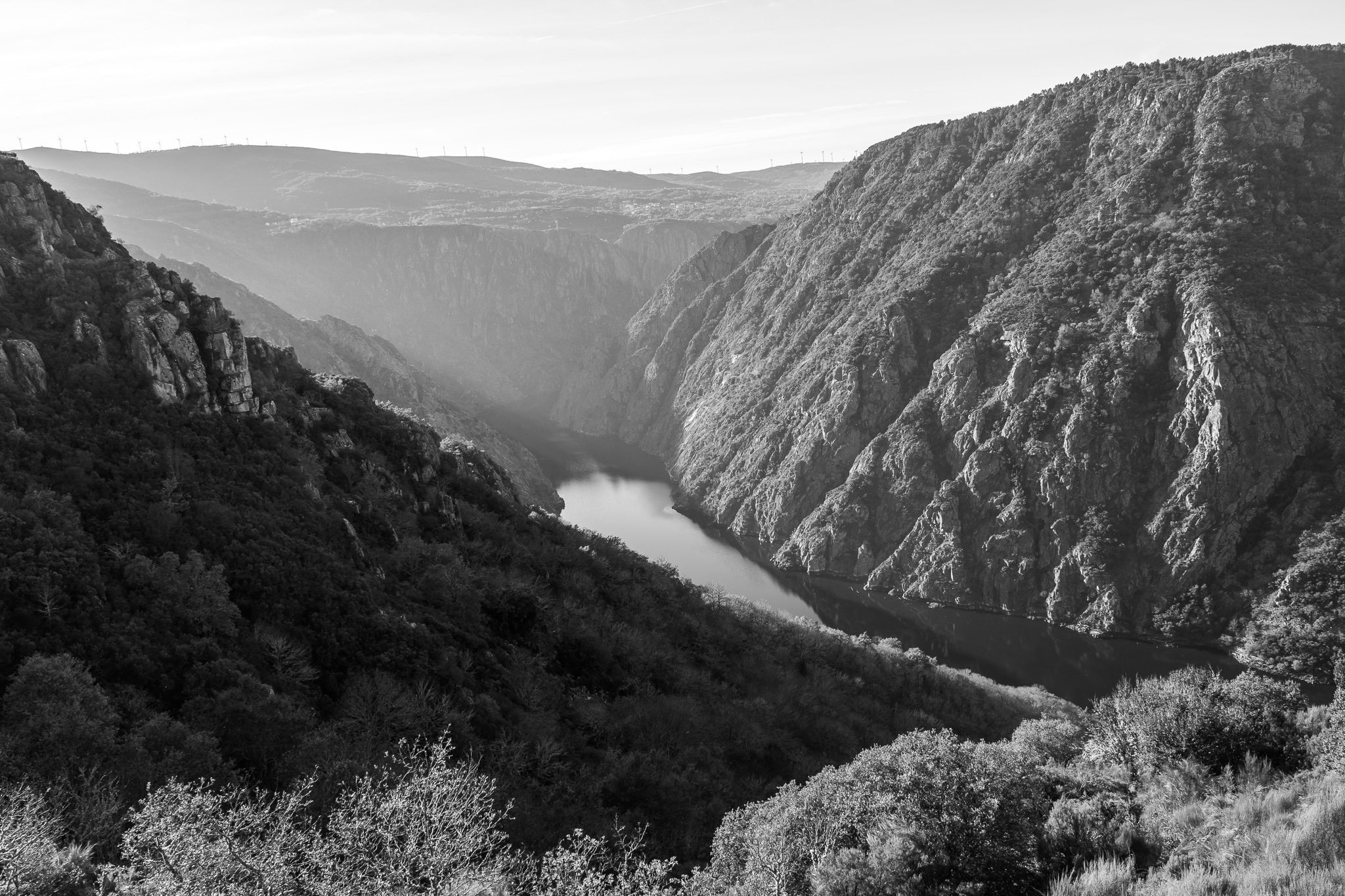 At the encounter of the banks of the rivers Sil and Miño, on the border between the provinces of Lugo and Ourense, are the gorges of the Canyon of the Sil. <br>Natural spaces with 500m deep canyons, small vineyards and different churches and monasteries make up much of the Ribeira Sacra.