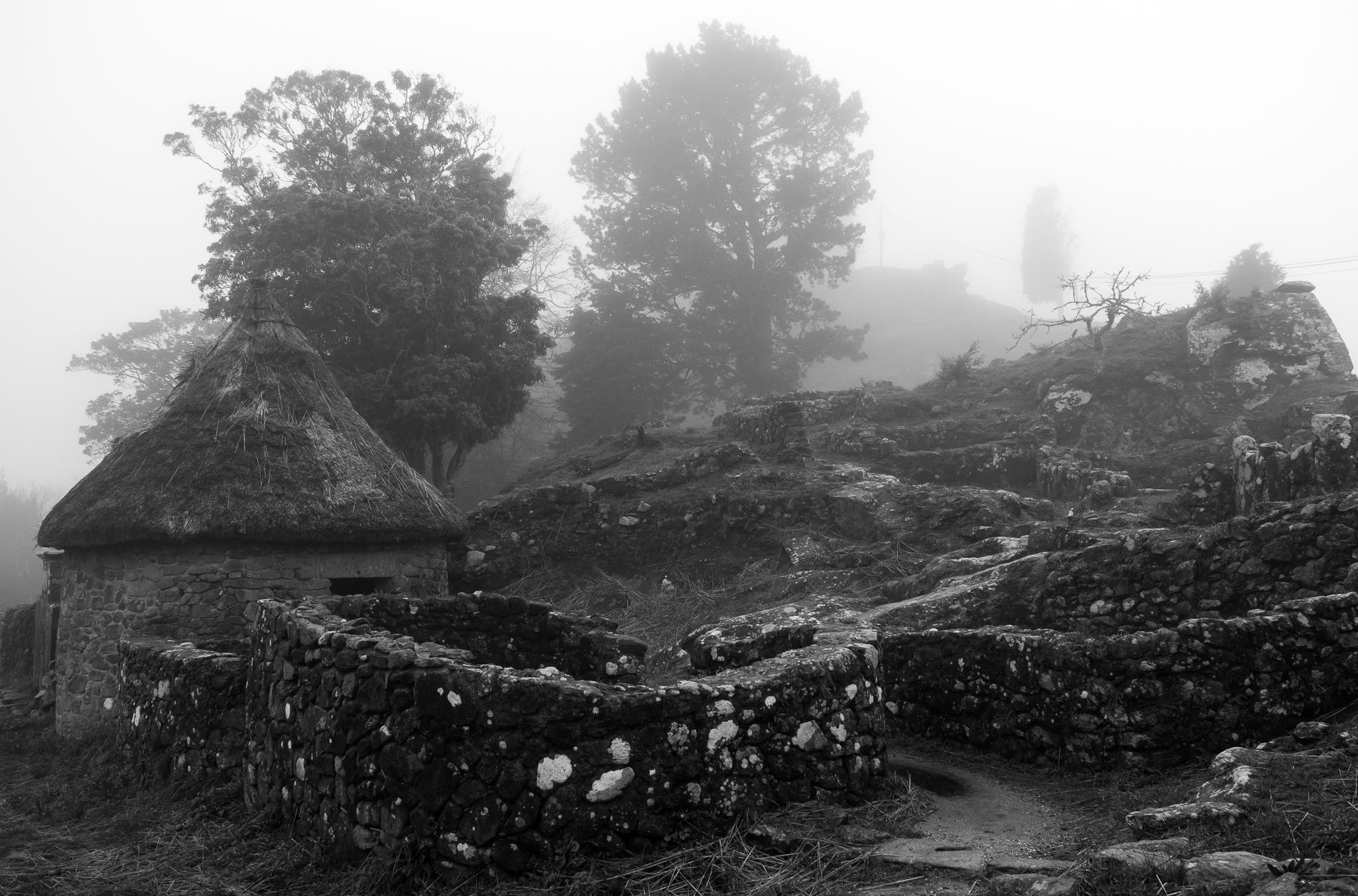 El castro de Santa Trega, en el municipio de A Guarda y a unos 340m de altitud, es un castro galaico y un sitio arqueológico que se sitúa en el monte Trega.<br><br> Declarado Monumento Histórico Artístico Nacional (1931) y perteneciente a la cultura castreña, es un gran yacimiento que narra la historia de los antiguos pobladores de Galicia.