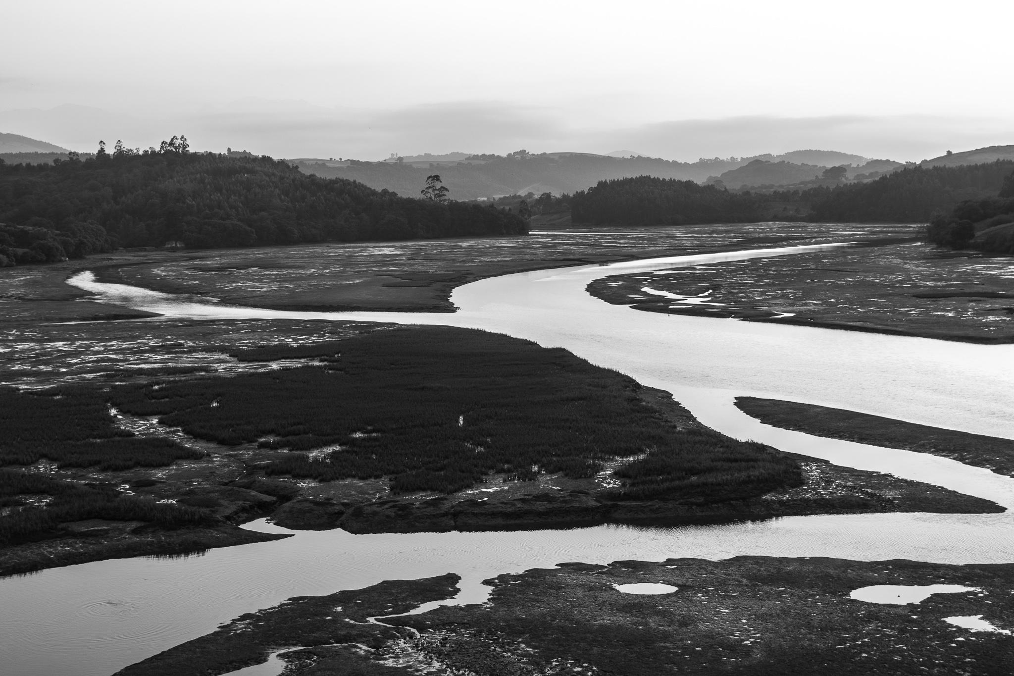 O Parque natural de Oyambre áchase na zona occidental de Cantabria. O parque comprende os estuarios da Ría de San Vicente e da Ría da Rabia, e o seu contorno constitúe un magnífico exemplo de ecosistema litoral.