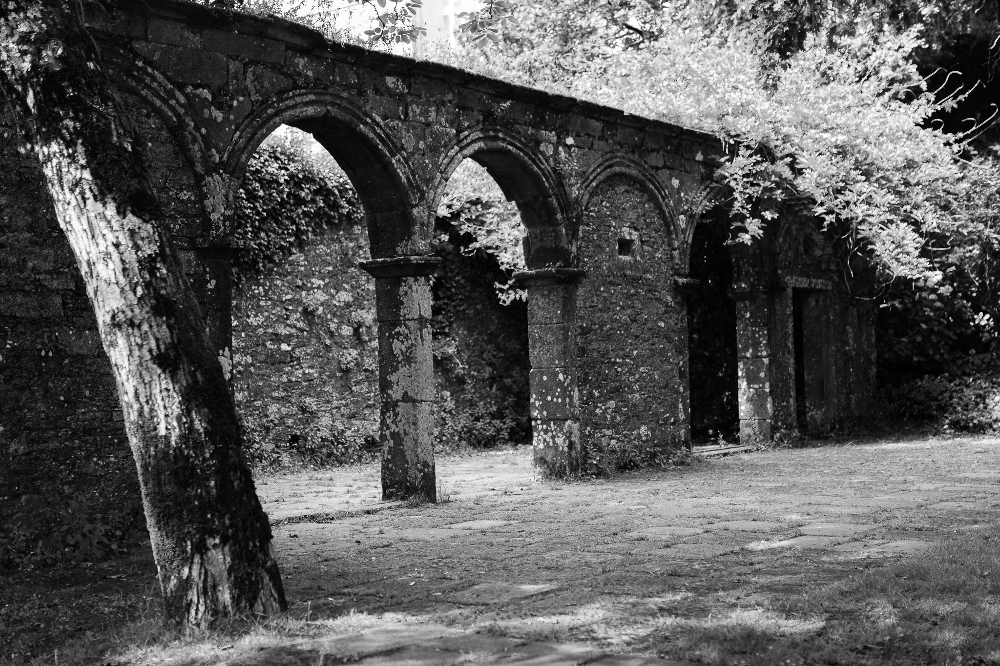 Inaugurado el 24 de julio de 1994, esta antigua finca y cementerio situados en el barrio de San Pedro fueron rehabilitados como parque por la arquitecta gallega Isabel Aguirre y el portugués Álvaro Siza. El Parque de San Domingos de Bonaval conecta, por medio de la Porta do Camiño, con el casco histórico de Compostela.