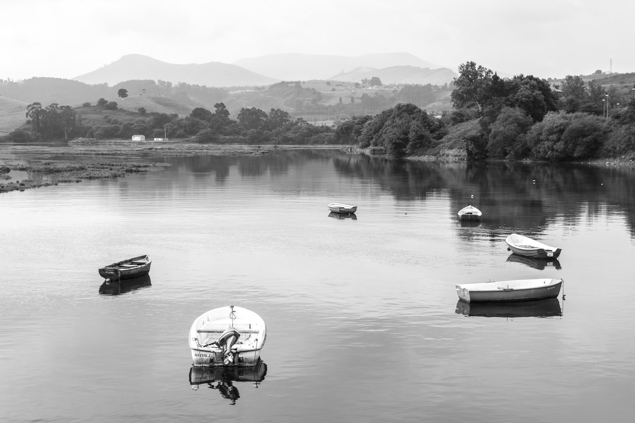 A vila de San Vicente de la Barquera é a capital da Comarca da Costa Occidental de Cantabria. A localidade, bañada polo mar Cantábrico, acolle tamén a desembocadura do río Escudo, que destaca pola súa conservación ecolóxica.