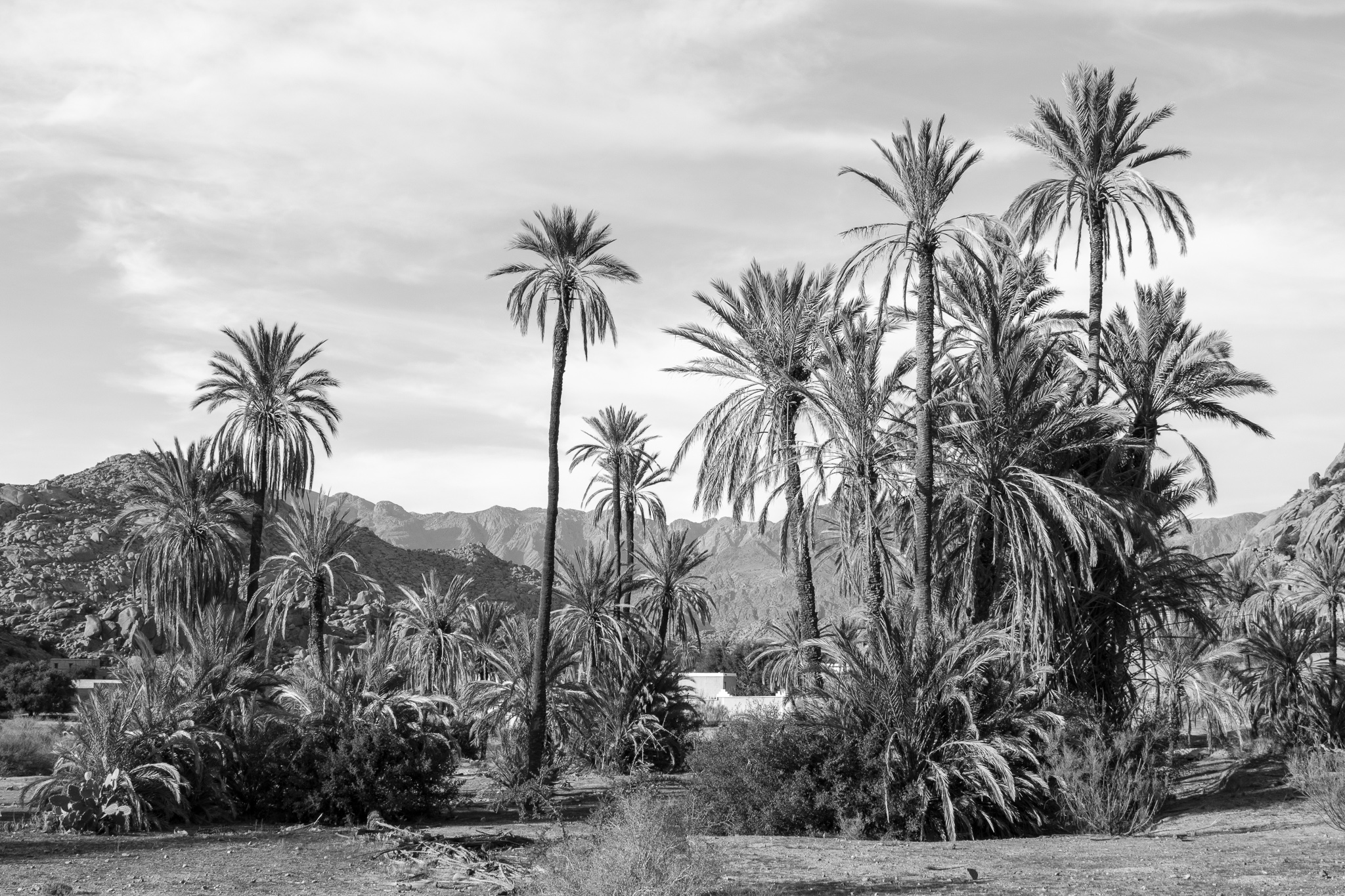 O pobo de Tafraoute atópase no suroeste de Marrocos, na provincia de Tiznit, e é parte central do Anti-Atlas.